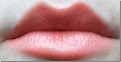 MUA lipstick nectar 16 (2)_thumb[1]