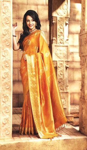 pothys-silk-sarees-online-bridal-collections-wedding-sareessilk_fb193f0732_3