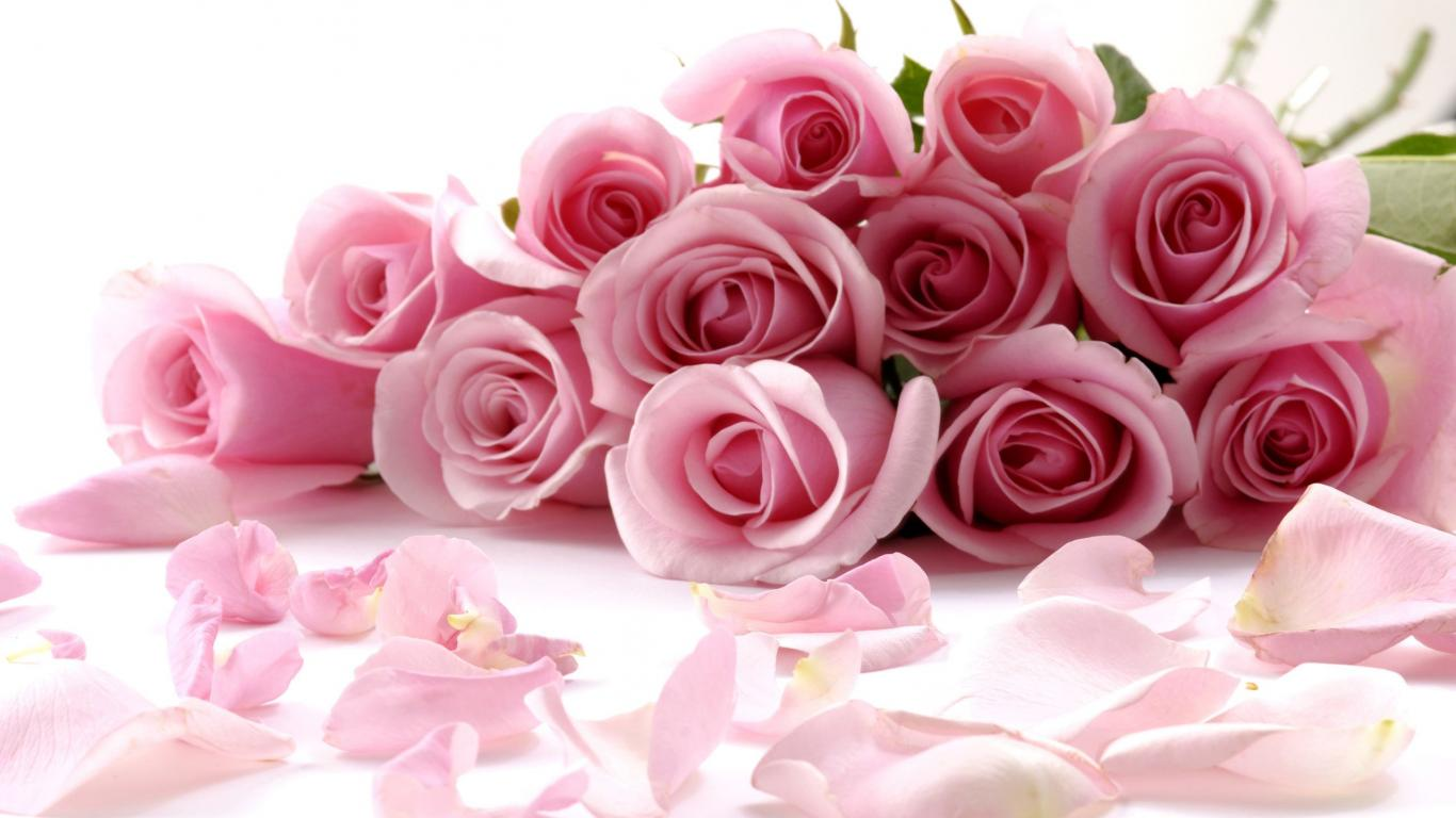 Beautiful bouquet of pink roses petals hd wallpapers