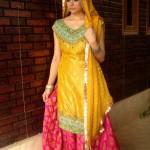 Mehndi-Dresses-Trends-2014-In-Pakistan-019