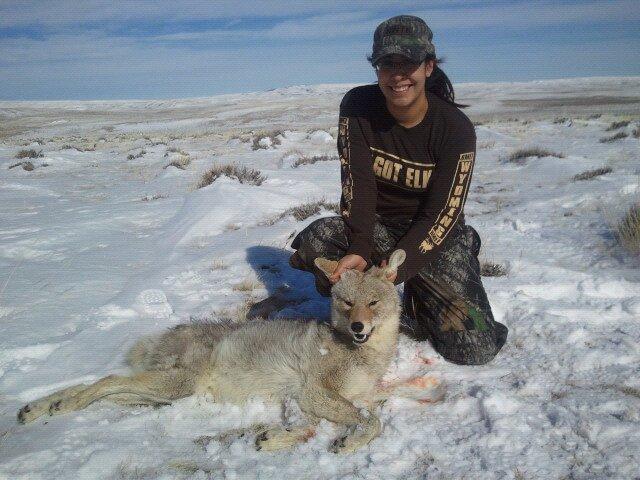 coyote-hunt